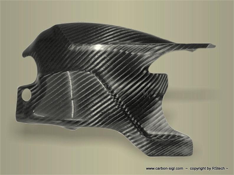 Ducati 848-1098 Schwingenschutz