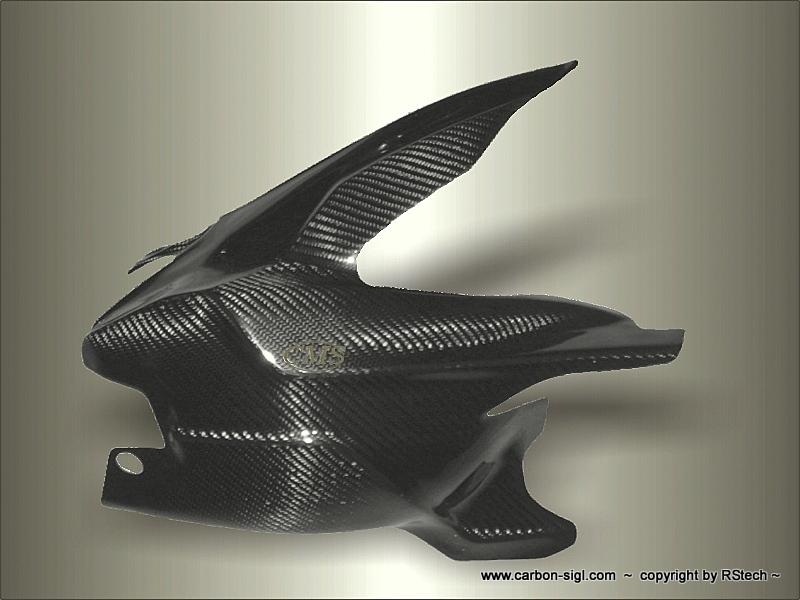 Ducati 1098 Schwingenschutz mit hinterem Kotflügel