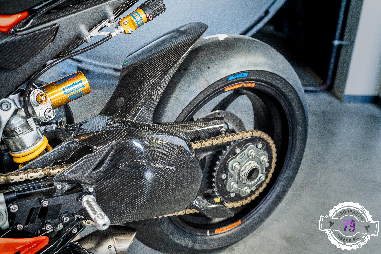 Ducati Panigale V4 Schwingenschutz mit Heckflügel
